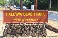 haleiwa beach park -1.jpg